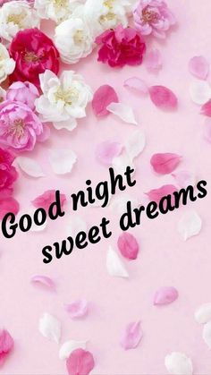 Good Night Flowers, Good Night Sweet Dreams, Good Night Image, Good Morning, Night, Have A Good Night, Buen Dia, Bonjour, Images For Good Night