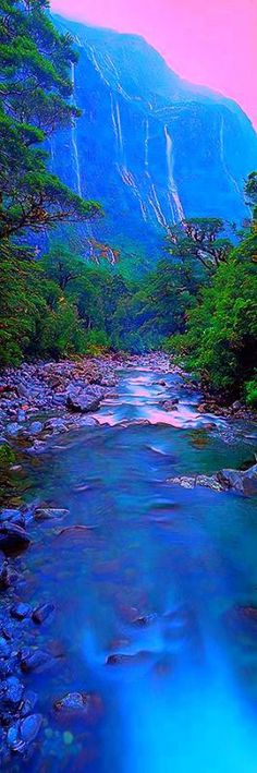 Beautiful View Of Fiordland National Park