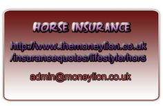 http://www.themoneylion.co.uk/insurancequotes/lifestyle/horseinsurance Horse insurance