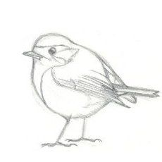 Dessin colorier une hirondelle pinceaux crayons feutres et coloriages pinterest - Modele d oiseaux a dessiner ...