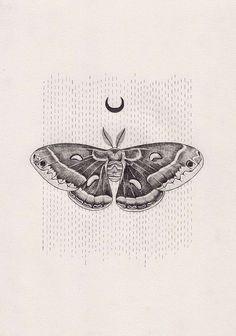 Lunar moth Lunar moth,tattoo Lunar moth by Peter Carrington Tattoo Studio, Beautiful Tattoos, Cool Tattoos, Tatoos, Tattoo Papillon, Moth Drawing, Illustration Arte, Kunst Tattoos, Tattoo Drawings