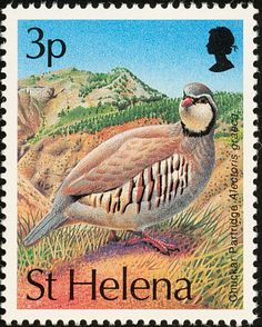 Chukar Partridge stamps - mainly images - gallery format