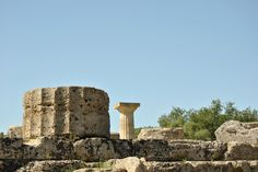 Columns in ancient Olympia!