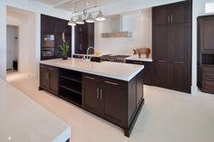 Modern Kitchen with Pendant Light, Exposed beam, limestone floors, Wine refrigerator, Flush, European Cabinets, L-shaped