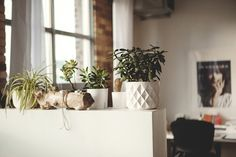 Urban Outfitters - Blog - Featured Brands: Jenny Bird