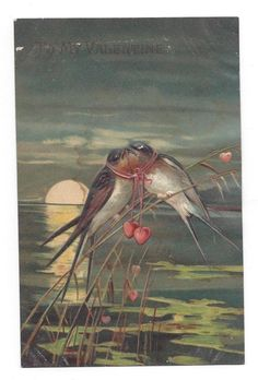Antique Pre-Linen Postcard To My Valentine Kissing Swallows with Hearts Holiday Postcards, Bedroom Colors, Swallows, Kissing, Antiques, Hearts, Decor Ideas, Painting, Ebay