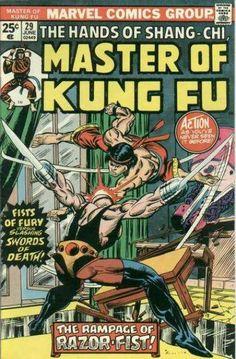 Master of Kung Fu 29