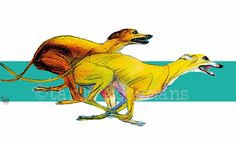 Running Greyhounds / Running Whippets / Running Galgos Greyhound art dog art by Tanja Kooymans