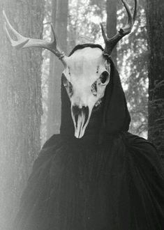 Dark Aesthetic