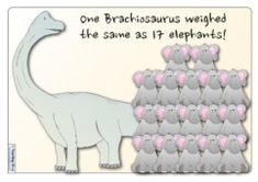 Free resources that compare the height, length and weight of different dinosaurs with everyday objects, to help children to understand their sizes. Classroom Display Boards, Classroom Displays, Classroom Setup, Dinosaur Facts, Dinosaur Posters, Math Writing Prompts, Dinosaurs Preschool, Preschool Class, How To Make Letters