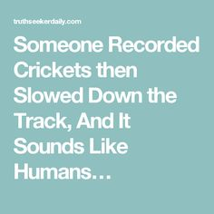Someone Recorded Crickets then Slowed Down the Track, And It Sounds Like Humans…