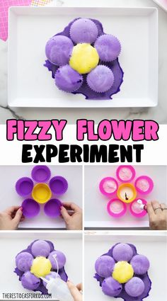Fizzy Flower Experiment - a fun science experiment for kids! This is an easy STEAM activity for kids too! Educational Activities For Kids, Summer Activities For Kids, Toddler Activities, Preschool Activities, Crafts For Kids, Preschool Art, Family Activities, Stem Projects, Science Projects