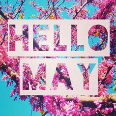 Happy May!! I can't believe it's May already!!:grinning::grinning: Comment below your 30 day goal:grinning::grinning: (scheduled via http://www.tailwindapp.com?utm_source=pinterest&utm_medium=twpin&utm_content=post77097292&utm_campaign=scheduler_attribution)