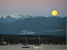 The moon belongs to none and belongs to all… West Coast Canada, Blue Moon, British Columbia, Great Places, Happy Children, Backyard, Mountains, September, Travel