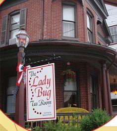 The Lady Bug Tearoom - East Berlin, Pa- Reserve way ahead of time!