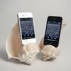 Shellphone Amplifier