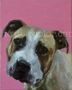 CUSTOM Pet Portrait Oil Painting 10x8  commissioned by thedogcolor, $70.00