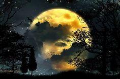Goodnight moon...
