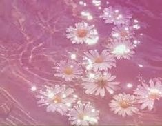 Image result for pastel pink aesthetic