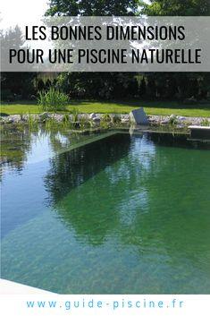 Natural Swimming Ponds, Outdoor Living, Outdoor Decor, Water Garden, Spas, Habitats, Relax, Backyard, Cottage