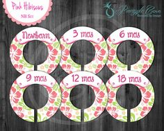 Hibiscus Baby Girl Closet Dividers to Organize Clothing for Baby Room   Pink Hibiscus