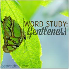 Gentleness is a character trait of God. One we take on as we follow Christ and his examples. It is as necessary as self-control, patience, love, and joy. Gentleness is restorative. It helps to dispel anger. Gentleness desires that no harm is done to others.