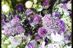 We sell artificial thistles including artificial heather, flowers of the forest at competitive and realistic prices. Based in East Lothian, we are able to ship easily within the UK and internationally with affordable shipping costs.