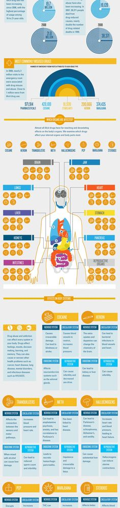 Drug Abuse and Your Body Infographic