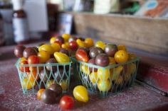 In Search of the Perfect Tomato  Photo by Tim Hussey