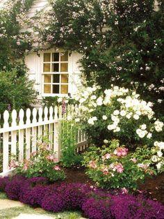 Best Ideas for cottage garden design front yard white picket fences Backyard Fences, Front Yard Landscaping, Landscaping Ideas, Yard Fencing, Garden Fences, Garden Shrubs, Garden Gate, White Picket Fence, Picket Fences