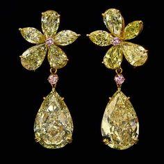 Diamond Solitaire Earrings, Diamond Jewelry, Modern Jewelry, Fine Jewelry, Saphir Rose, Silver Jewellery Online, Star Jewelry, Jewelry Box, Jewlery