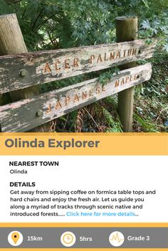 Olinda Explorer, a fantastic forest walk in the heart of Victoria, Australia. Formica Table, Victoria Australia, The Fresh, Walks, Explore, Heart, Day, Olinda, Hearts