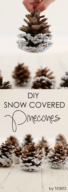 Festive DIY Pine Cone Crafts for Your Holiday Decoration - For Creative Juice : DIY Snow Covered Pinecones. These snow frosted pinecones are easy and inexpensive to DIY and will surely add elegant rustic charm to your Christmas decor! Pine Cone Crafts, Christmas Projects, Holiday Crafts, Christmas Ideas, Holiday Ideas, Cheap Holiday, Holiday Foods, Noel Christmas, Winter Christmas