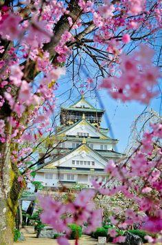 🏯🌸🇯🇵Osaka Castle 大阪城