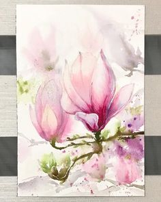 "469 Likes, 11 Comments - hyun, jungsook (@paintinghyun) on Instagram: ""Another magnolia 💗#magnolia #watercolor #watercolour #watercolours #waterblog #watercolorpainting…"""