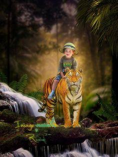 Pet Tiger, Digital Backgrounds, Digital Backdrops, Magic Carpet, Photo Projects, Jungle Animals, Whimsical Art, Forest Waterfall, Illustrators