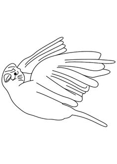 White Canary Bird Coloring Pages : Best Place to Color Bird Coloring Pages, Coloring Pages For Kids, Canary Birds, White Canary, Online Coloring, Kit, Pets, Coloring Pages For Boys, Coloring For Kids