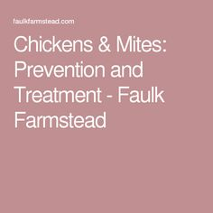 Chickens & Mites: Prevention and Treatment - Faulk Farmstead