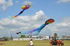 Large kites at Kite Fest Louisiane. #louisiana #westbatonrouge #portallen #kitefest #kite