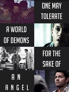 <3 I don't like The Girl in the Fireplace as an episode but this quote is really powerful. It's almost talking about life as a whole. We grin and bear it, and trudge along through all sorts of tragedy, for the sake of the truly beautiful people, places, and moments in life. Also, the application of the quote to destiel is really adorable.
