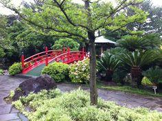 Yeomiji Botanical Garden in Jeju Seoguipo Joogmoon(제주 서귀포 중문)