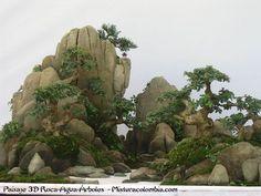 盆栽 Mistura Colombia - Bonsai, servicio de venta y mantenimiento, accesorios, herramientas,Paisaje chino Pei jin.