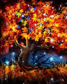 """Autumn Magic"" - Chris Cole"