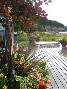 Expertise in landscape design is essential for personalizing the right composition for you.