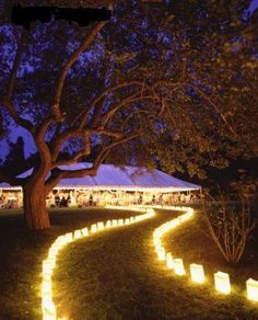 Evening reception walkway lit up with bag lanterns