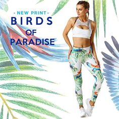 Patternbank are loving the use of one of our tropical prints on activewear brand 'Pink Sun Active'. Tropical Burst by Shock Rider Creative Studio…