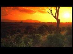 Mozart - Bande originale du film Out of Africa.mp4