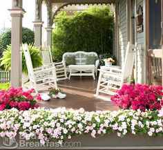 White Rockers and Pink Azaleas