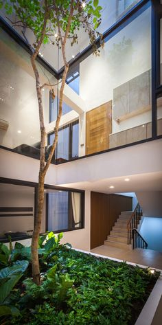 Home built around a Courtyard with a Tall Tree growing in the Center! ||  A Dramatic Transformation For A Building In Thailand