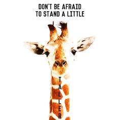 Don't be afraid to stand a little taller.  Inspiring #rhonnadesigns